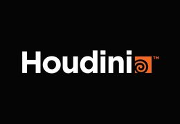 Houdini - Animation